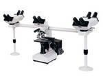 China MV-510 510 series Multi-viewing Microscope on sale