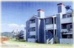 Oridinary Portland Cement 43 grade (OPC)