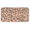 China Barley for sale
