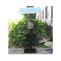 Solar mosquito killer light