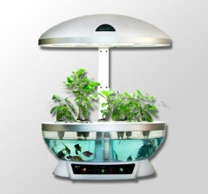 China Cookware MOCLE indoor garden Hydroponics, fish farming, smart lamp on sale