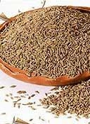 China Cummin Seeds on sale