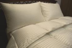 China Royal Hotel Silk Down comforter 50oz on sale