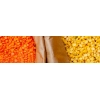 China Red Lentil for sale