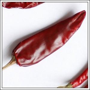 China Jinta chilli,Puya chili on sale