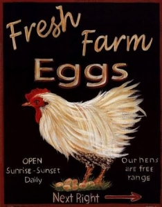 China Fresh Eggs - Grace Pullen on sale