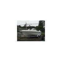 Boats Triumph 195DC