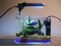 China Aquarium Kits & Pet Housing on sale