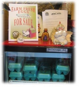 China Farm Fresh Eggs Overview on sale