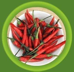China Indian Spices on sale