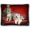China Full Color Pet Photo Pillow Sham for sale