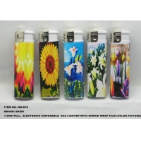 DISPOSABLE ELECTRONIC GAS LIGHTER