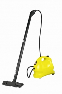 China Portable steam cleaner on sale