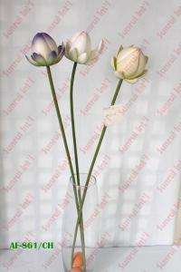 China EVA Lotus on sale