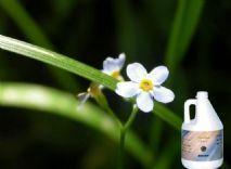 China Deodorant Sprays(4L) on sale