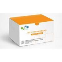 In Vitro Diagnostic (IVD) Test Kits