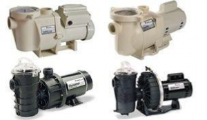 China Pentair Pool & Spa Pumps on sale