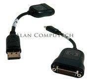 China HP DisplayPort to DVI-D Adapter Cable 481409-001 on sale