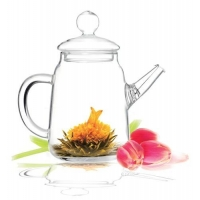 China Tea Beyond glass tea pot with infuser Solo 12 oz Non dripping heat resistant on sale