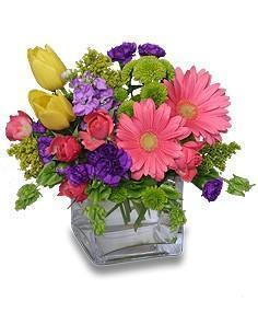China Birthday Flowers BIRTHDAY CONFETTIBirthday Flowers on sale