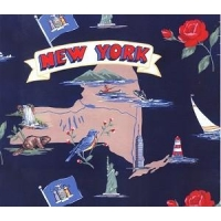 China Fabrics Empire State of New York Map Print Fleece Fabric Print on sale