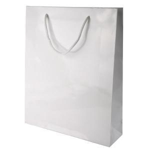 China Conference Bags Gloss Laminated Paper Carrier on sale