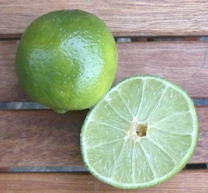China Fresh Lime in Thai Cooking on sale