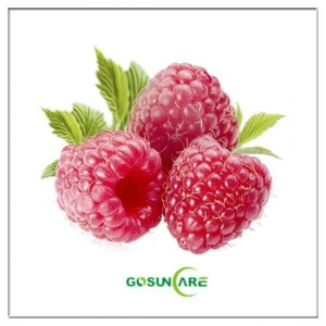 China Raspberry Extract-Raspberry Ketone on sale