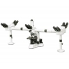 China Biological Microscopes MV-5 Multi-viewing Microscope for sale