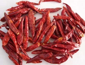 China Dried Red Chilli on sale