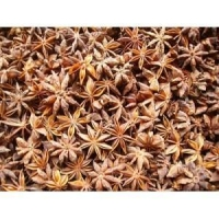 China Aniseed Extract (Star Anise Extract, Shikimic Acid) on sale