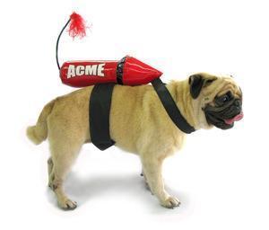 China Costumes Acme Rocket Dog Costume on sale