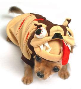China Costumes Mad Dog Pet Dog Costume on sale