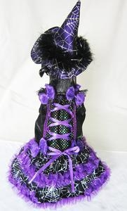 China Costumes Halloween Purple Witch with Spider Webs Lighted Pet Dog Costume on sale