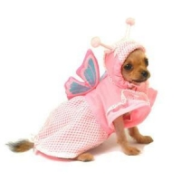 Costumes Lady Butterfly Princess Pet Dog Costume