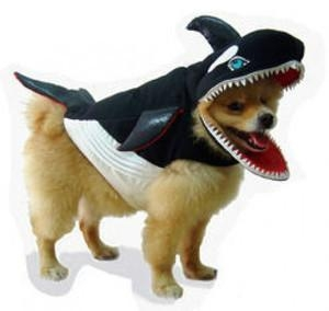 China Costumes Killer Whale Pet Dog Costume - Great for Halloween ! on sale