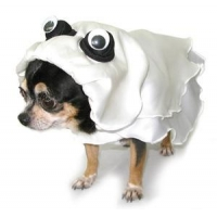 Costumes Ghost Dog Costume