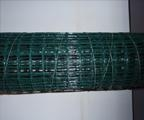 China Steel Products PVC Coated Welded Mesh on sale