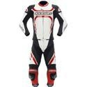 China Apparel Men's Alpinestars Motegi Two-Piece Leather Suit White/Black/Red on sale