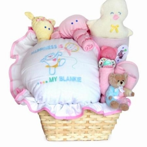 China Baby Gift Basket of Happiness Basket for Baby Girl on sale
