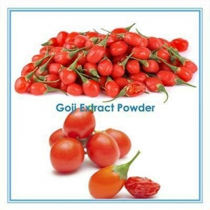China Concentrated Juice Wolfberry Ningxia Goji berry Powder Polysaccharide on sale