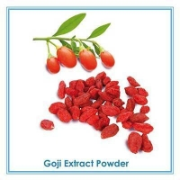 barbury wolfberry extract/100% natural wolfberry extract/wolfberry(goji)extract