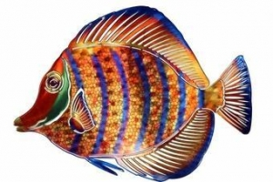 China Tropical Smiling Fish Metal Wall Sculpture on sale