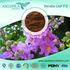 China Banaba Leaf Extract Powder Supplier Wholesale / the Active Ingredient Is Corosolic Acid on sale