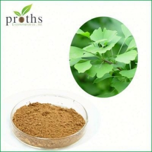 China 100% Natural Hot Sale usp grade herb extract 24% flavones on sale