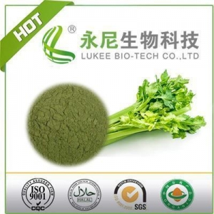 China Vegetable Drink Celery Juice Powder with Best Price on sale