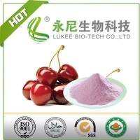 China High Quality Natural Acerola Cherry Fruit Powder on sale
