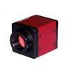 China Industrial Camera,CCD Camera,VGA-130 for sale