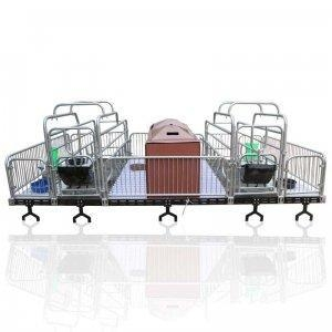 China Hog House Equipment PVC Floor farrowing crate for pigs on sale