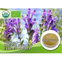 China Organic Skullcap extract powder on sale